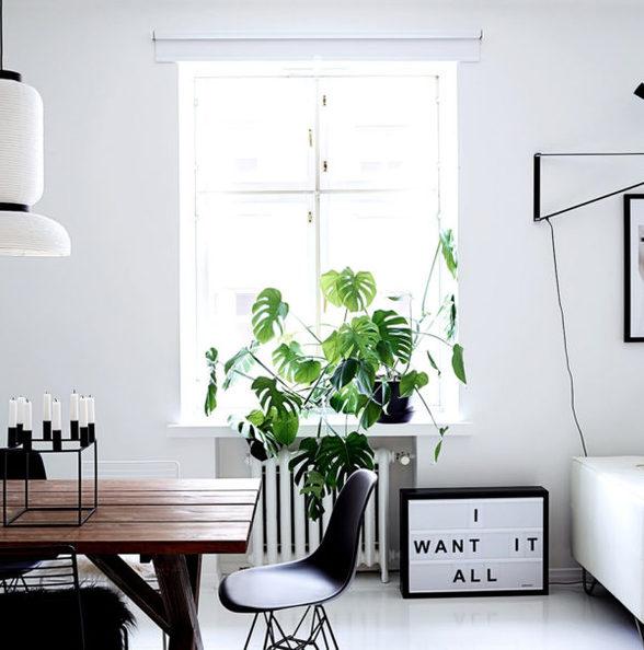 干净、纯白的极简风格公寓设计
