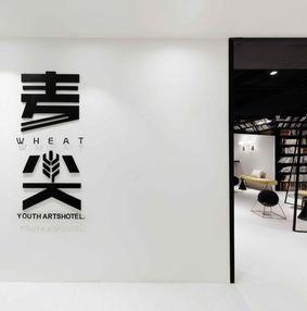 杭州麦尖青年艺术酒店
